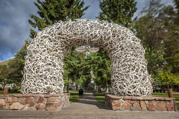 Jackson Home Security - Jackson antler arch